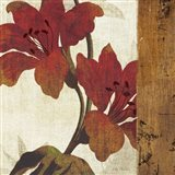 Floral Harmony III Art Print