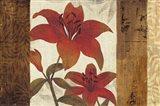 Floral Harmony I Art Print