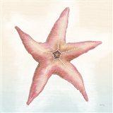Boardwalk Starfish Art Print