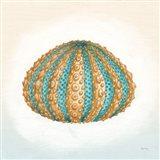 Boardwalk Urchin Art Print