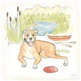 Dog Days of Summer Comet Art Print