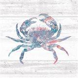 Ocean Life I Art Print