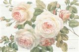 Vintage Roses White on Shiplap Crop Art Print