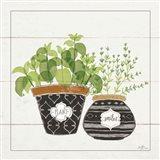 Fine Herbs V Smiles Art Print