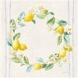 Floursack Lemons V Navy Art Print