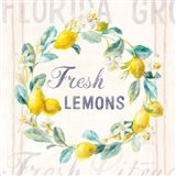 Floursack Lemon V Bright Art Print