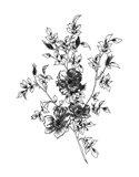 Sketchbook Flowers on White II Art Print
