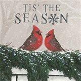 Christmas Affinity X Two Birds Art Print