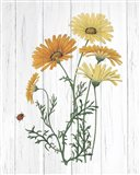 Botanical Bouquet on Wood I Art Print