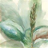 Exotic Flower I Art Print