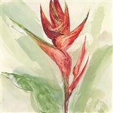 Exotic Flower IV Art Print