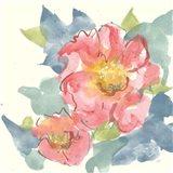 Peony in the Pink II Art Print