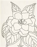 Gardenia Line Drawing Crop Art Print