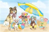 Summer Paws I Art Print