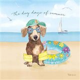 Summer Paws III Art Print