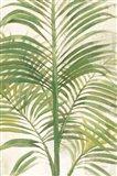 Palms II Bright Art Print