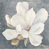Serene Magnolia Gray Art Print