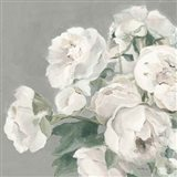 Peonies on Gray Art Print