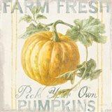 Floursack Autumn V Art Print
