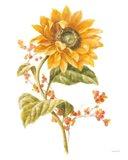 Floursack Autumn I on White Art Print