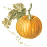 Floursack Autumn VI on White Art Print