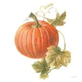 Floursack Autumn VIII on White Art Print