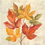 November Leaves IV Art Print