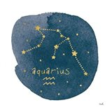 Horoscope Aquarius Art Print