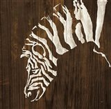 White Zebra on Dark Wood Art Print