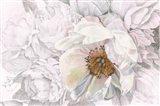 Blooming Sketch Art Print