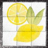 Citrus Tile VI Black Border Art Print