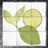 Citrus Tile VII Black Border Art Print