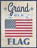 Grand Old Flag Dark Art Print