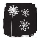 Nature by the Lake Flowers III Black Art Print