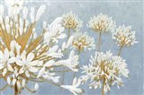 Golden Spring Blue Gray Art Print