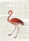 Flying Flamingo No Balloons Art Print
