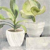Greenery Still Life Art Print