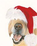 Santa Ruff Art Print