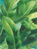 Palms of the Tropics II Art Print