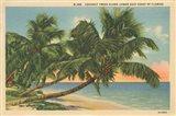 Florida Postcard III Art Print