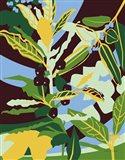 Bay Leaf Art Print