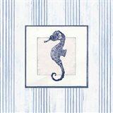 Sanibel Shell IV Navy Art Print