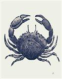 Ocean Finds V Navy Art Print