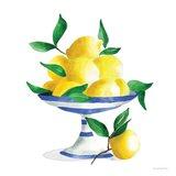 Spanish Lemons II Art Print