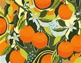 Sweet Clementine I Art Print