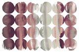 Summer Dots Plum Horizontal Art Print
