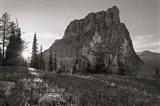 Boulder Pass Glacier National Park BW Art Print