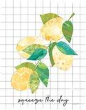 Summer Lemons Sentiment II Art Print