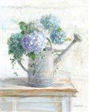 Morning Hydrangeas II Art Print