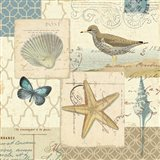 Coastal Collage IV Art Print